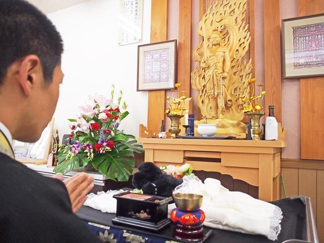 ペットの葬儀と火葬の違いは何